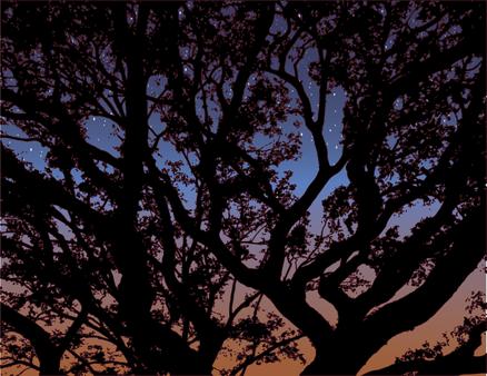 Twilight Tree