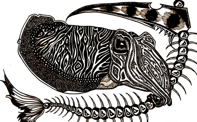 Cuttlefish of Death