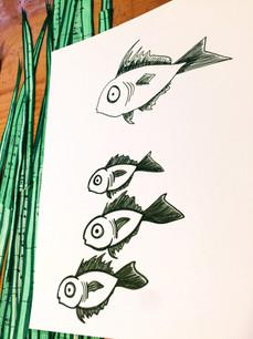 Fisheys