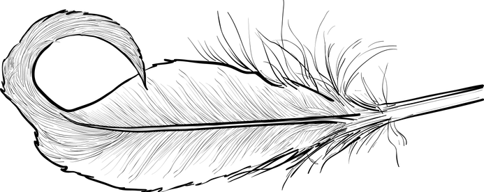 FeatherWhite.png