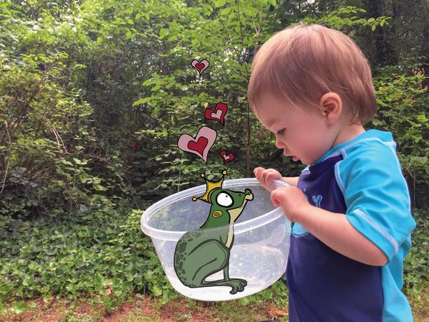 Froggy Prince