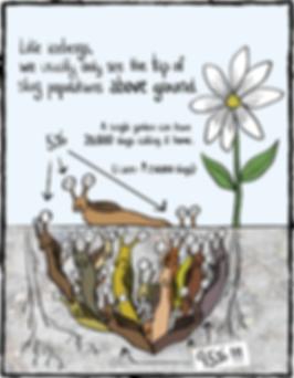 SlugsPage11.png
