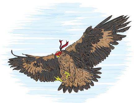 Ninja Hawk