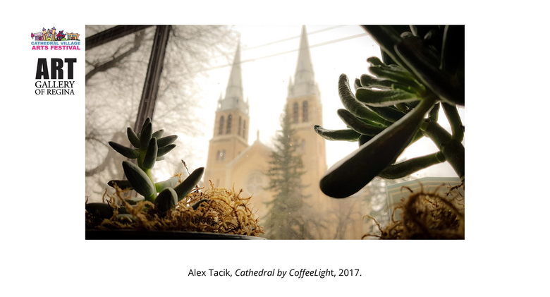 Alex Tacik, Cathedral by CoffeeLight, 2018.