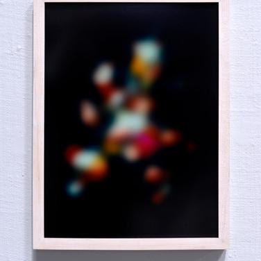 Blurry Still Life-Flowers (After Monnoyer)