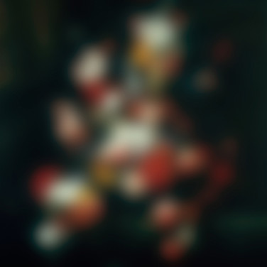 Blurry Still Life-Flowers