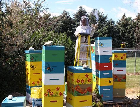 hives 2017d-1.jpg