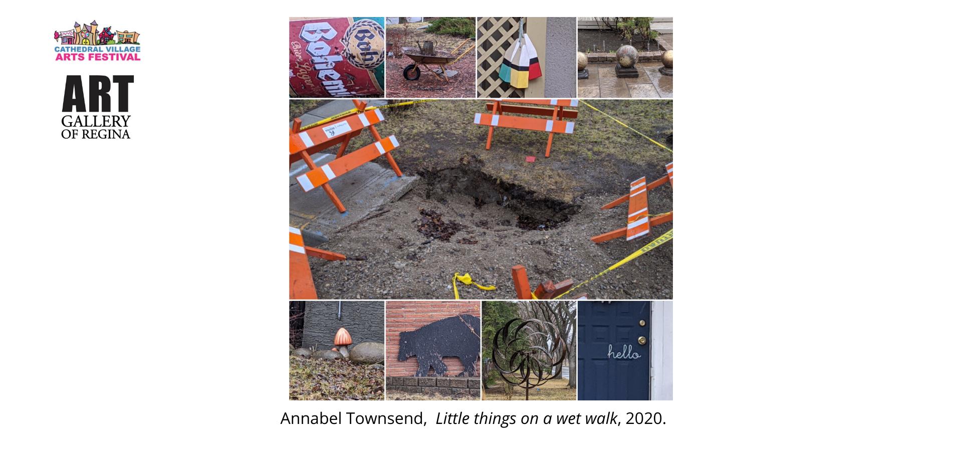 Annabel Townsend,  Little things on a wet walk, 2020.
