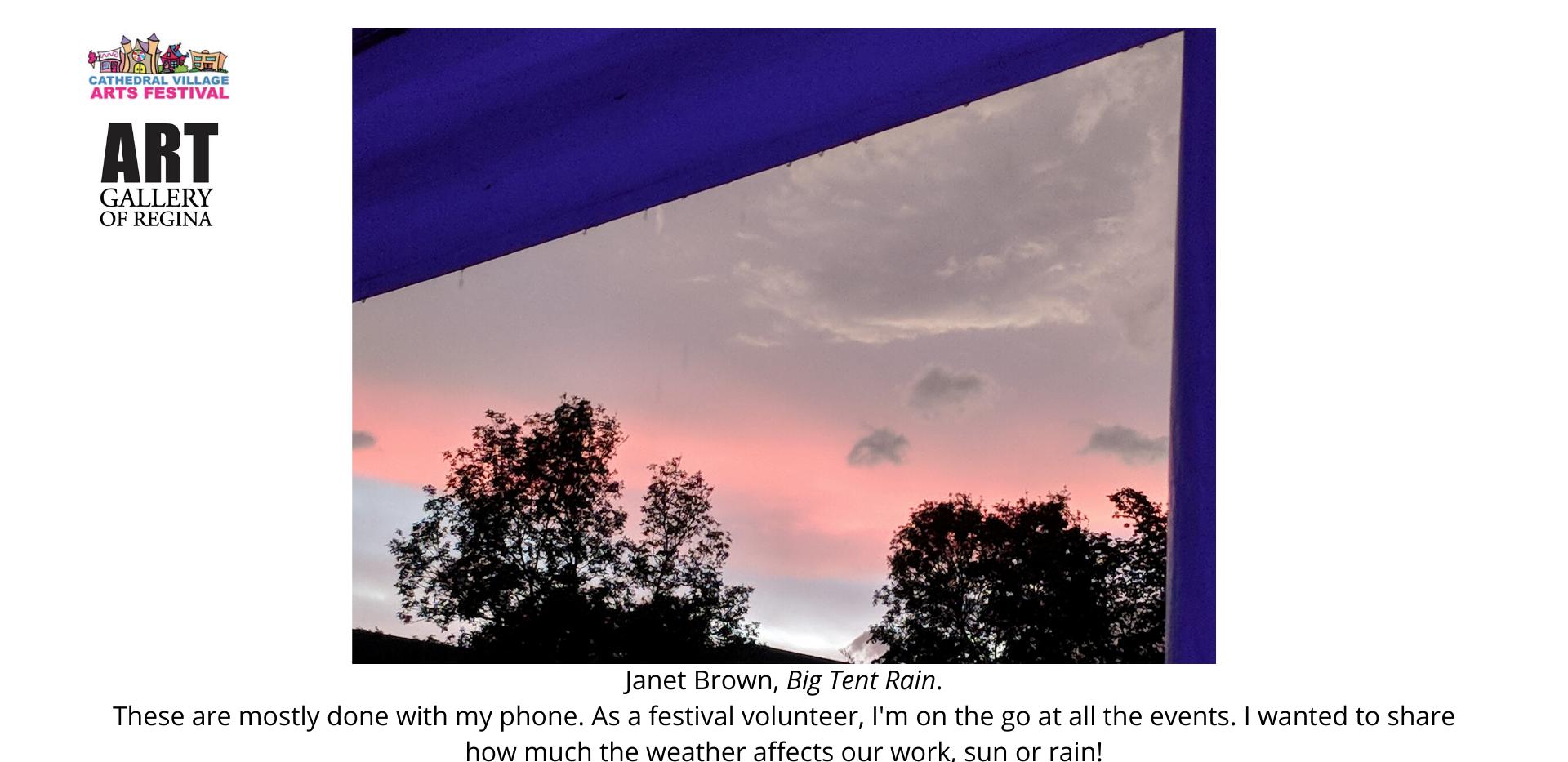 Janet Brown,Big Tent Rain.