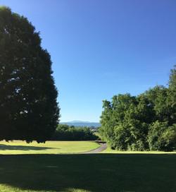 Riverdale School Grounds