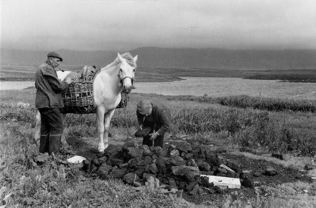 2menpony[1] Uist Peat Highland.jpg