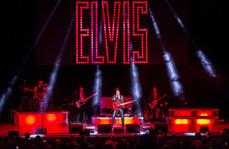 Black Leather Elvis.jpg