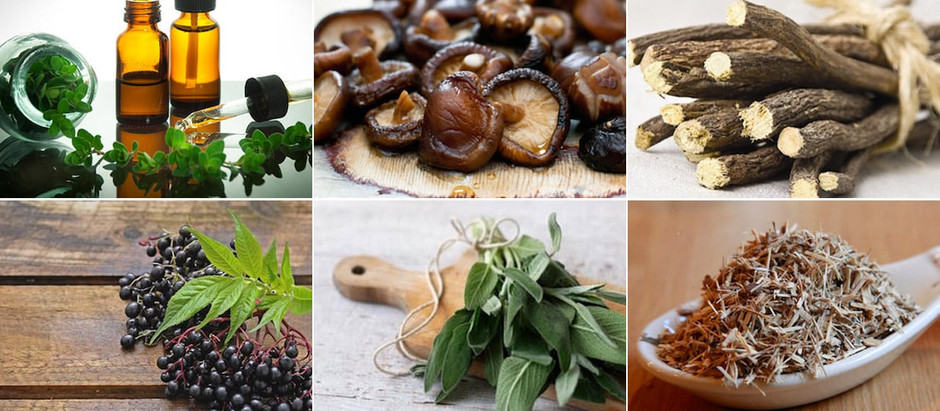 Herbal Immune Boosters
