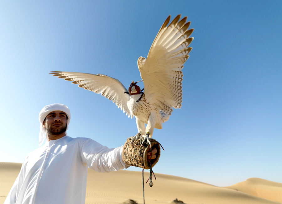 Culture-In-Abu-Dhabi