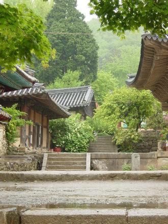 Korean (Intermediate)