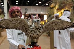 Abu-Dhabi-International-Exhibition-3