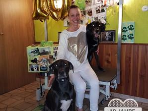 10 Jahre Hundepflege Da & Dort
