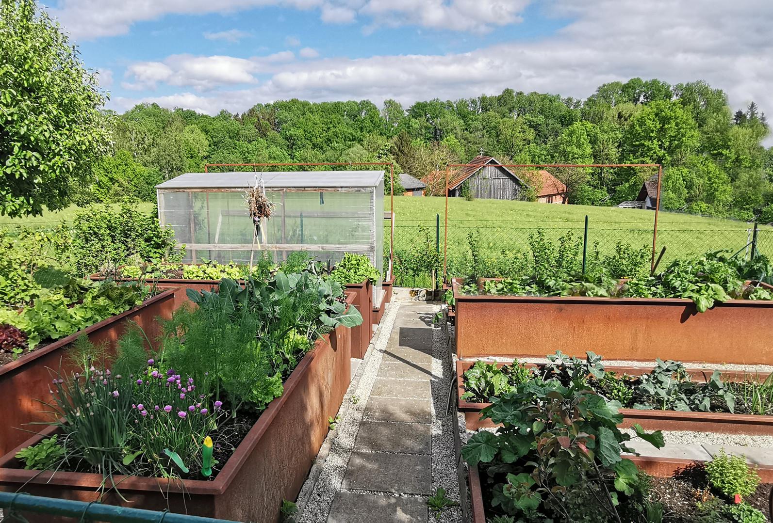 Garten Hochbeete Flachbeete