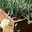 Thumbnail: Quadratisches Metallhochbeet mit Rasenmähkante