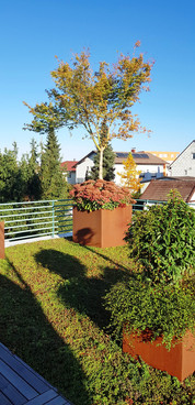 Blumentrog Dachterrasse, Garten Lehner