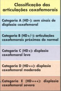 Tipos de displasia