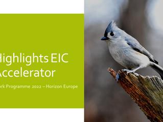 EIC Work Programme 2021 - EIC Accelerator
