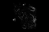 logo elfe transparent.png