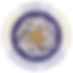 AOEA logo FINAL.png