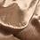 Thumbnail: Velluto bronzato