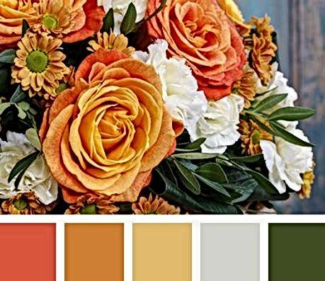 colori pantone3.JPG