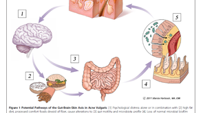 How to recognise the gut-brain axis?