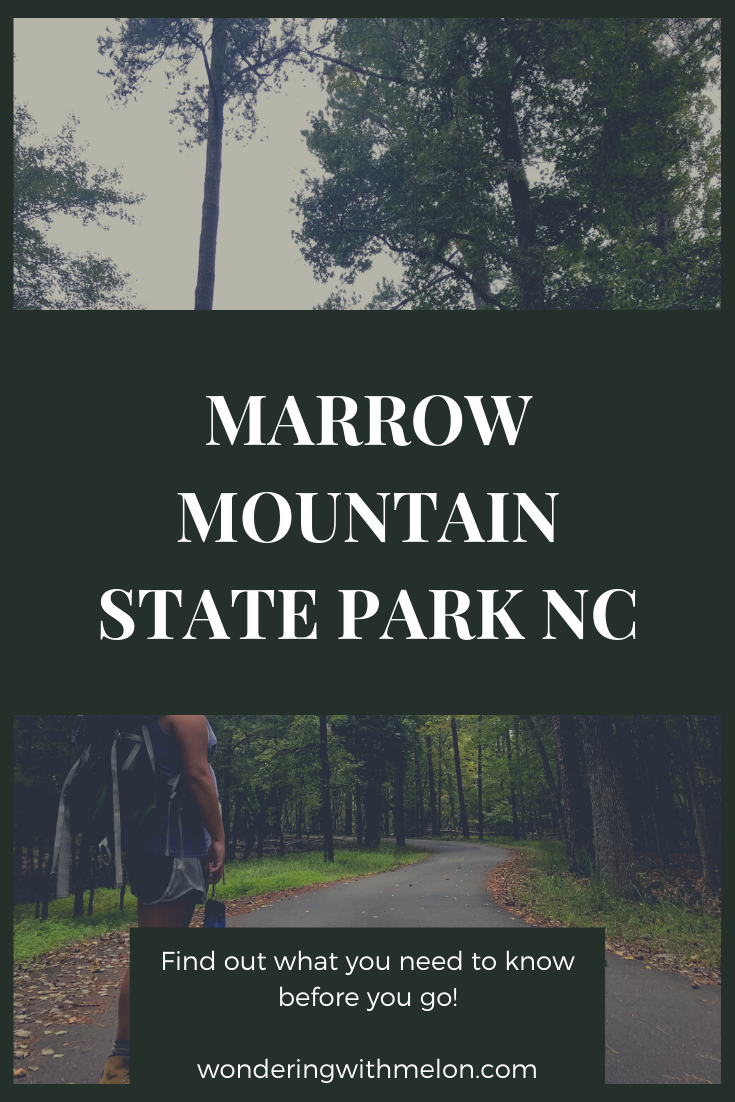Marrow Mountain State Park