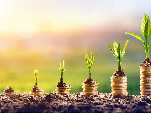 Inequality and green growth. The work by 3 Sapienza University students of Rome