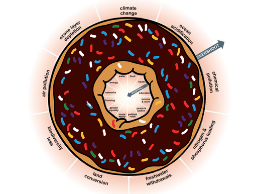STUDENTS' VOICE COUNTS-The Doughnut Economy. A study by two students of Sapienza University of Rome