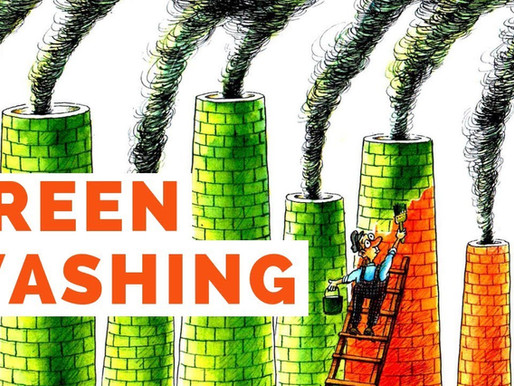 "Greenwashing: true commitment to sustainability or just a ""marketing spin""?"
