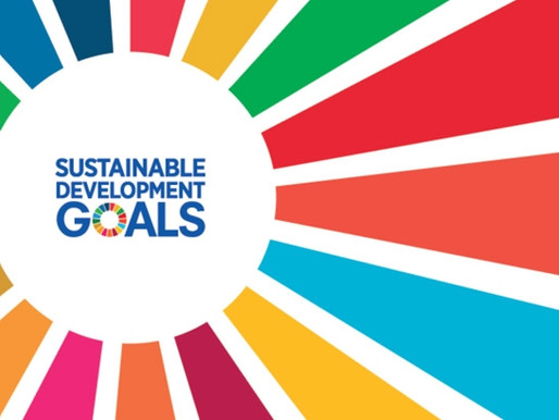 AGENDA 2030. The Sustainable Development Goals - A study by Sapienza university students