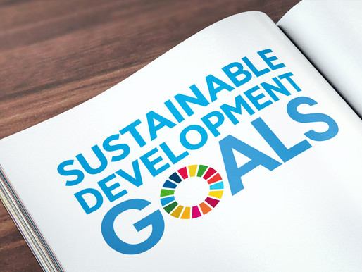 Sustainable development goals. The work by Sapienza students for the CSB Pilot Course