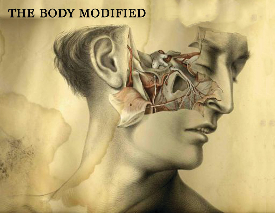 The Body Modified Book Cover