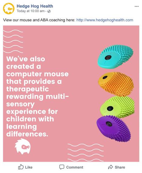 hedgehog health facebook ad