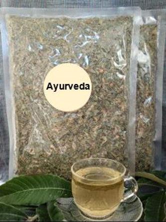 Chá de folhas de nespereira (Eriobotrya japónica)
