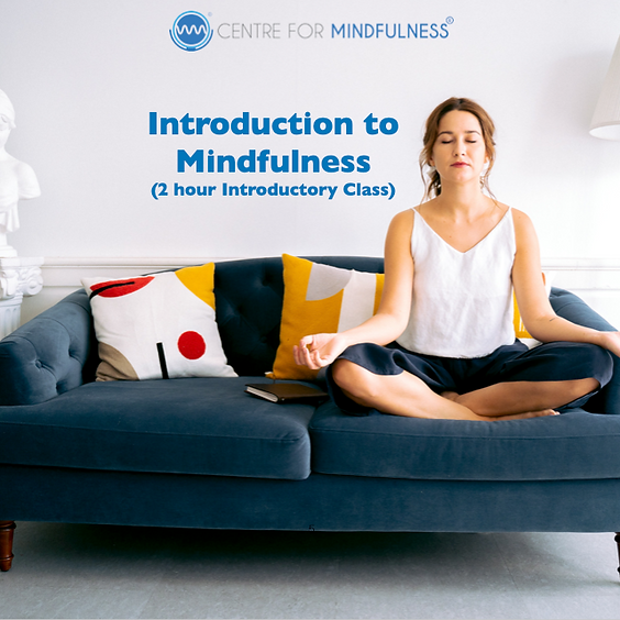 Introduction to Mindfulness (Online - 2 hour class)