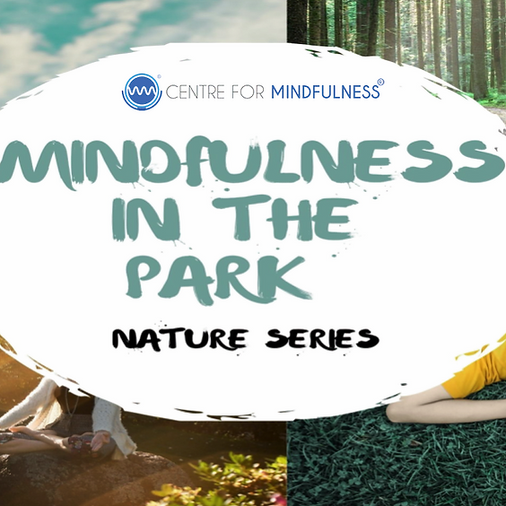 Mindfulness in the Park