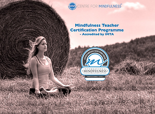 Mindfulness Teacher Training Certification Course (IMTA Accredited)