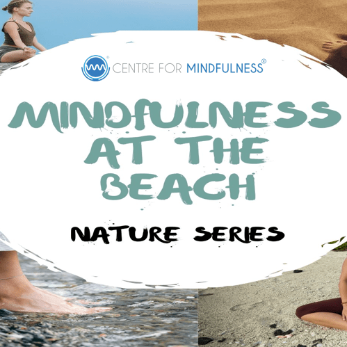 Mindfulness at the Beach