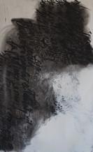 192 X 120 cm - encre, fusain et aclylique sur papier photographique