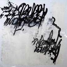 120 x 120 cm - encre et aclylique sur papier photographique