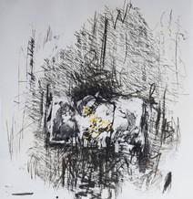 100 x 100 cm - fusain et aclylique sur papier photographique