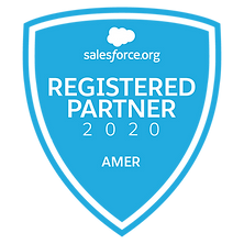 2020_Registered_AMER_Partner_Badge.png