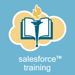Salesforce User Training
