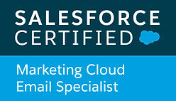 Salesforce certified Marketing Cloud Email Specialist badge